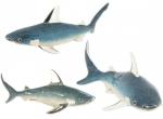 Три Акулы серебро ST230