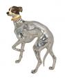 Собака породы Левретка ST152