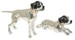 Собаки породы Поинтер ST143