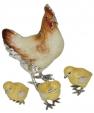 Курица с цыплятами ST307