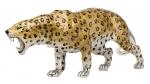 Леопард серебро с эмалью ST424