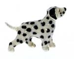 Собака породы Далматинец ST525